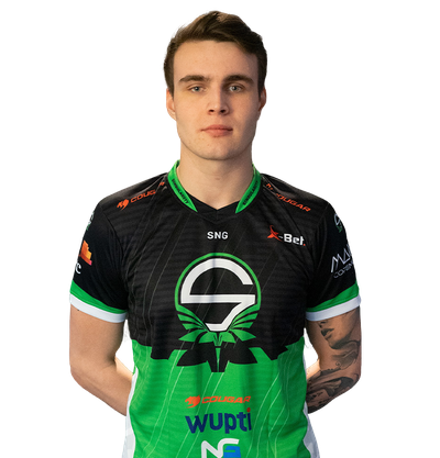 Image of CS:GO player mertz