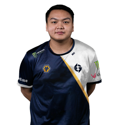 Image of CS:GO player Brehze