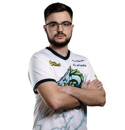 Image of CS:GO player sdy